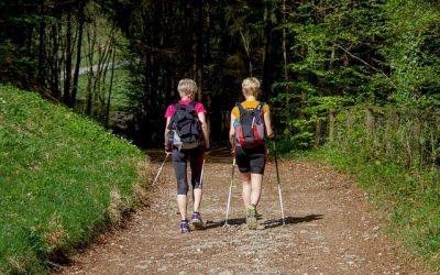 LelkesTest Nordic walking 50+ program az egyházmegyében